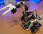 roving servo bot