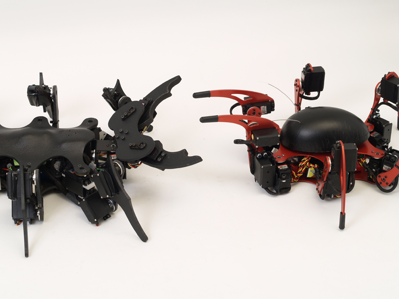 A-pod, Ant Inspired Hexapod by Zenta in Member Galleries