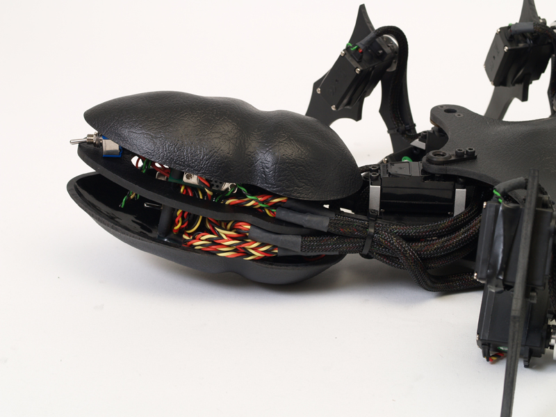 A-pod Abdomen/tail Section by Zenta in Member Galleries