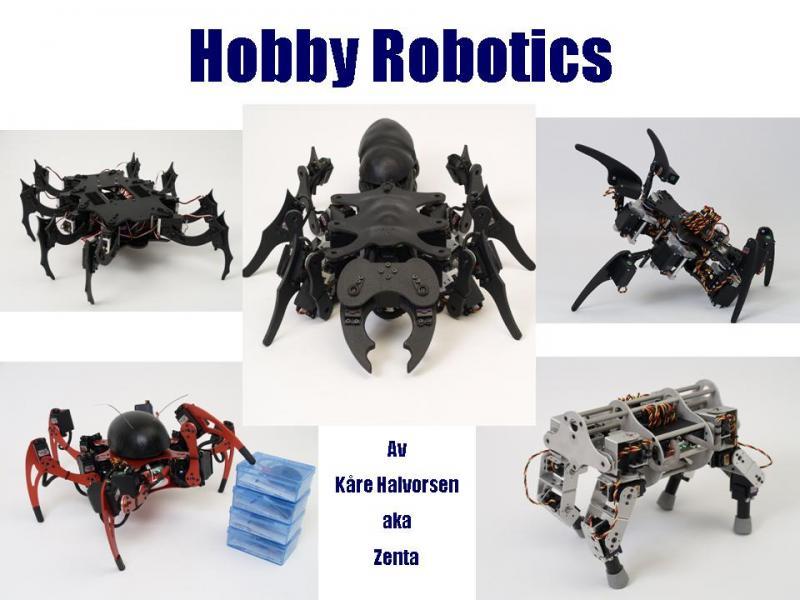 Hobby Robotics by Zenta in Member Galleries