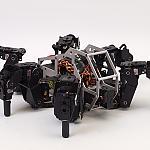 T-hex by Zenta in Member Galleries