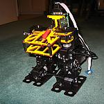 Biped Scout With 5990tg, Servo Hinged by tom_chang79 in Member Galleries