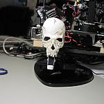 Skull3 by gdubb2 in Member Galleries