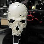 Skull5 by gdubb2 in Member Galleries