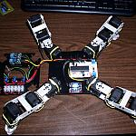 Gold Rush Wiring Harness by Upgrayd in Member Galleries