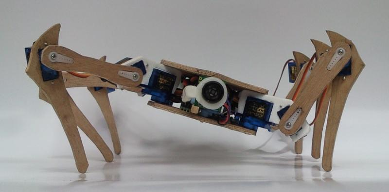Hexapod6 by Chench in Member Galleries