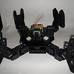 Draco 08 Torso, Chassis, Legs by elaughlin in Member Galleries
